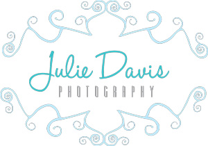 Julie Davis Photography Logo